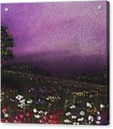 Purple Meadow Acrylic Print by Anastasiya Malakhova