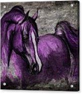 Purple One Acrylic Print by Angel  Tarantella