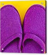 Purple Slippers Acrylic Print by Tom Gowanlock