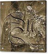 Q II Acrylic Print by Yanni Theodorou