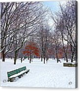 Queen's Park Acrylic Print by Valentino Visentini