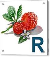 R Art Alphabet For Kids Room Acrylic Print by Irina Sztukowski