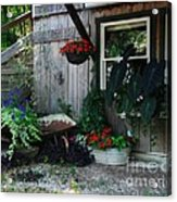 Rabbit Hash Morning Acrylic Print by Mel Steinhauer