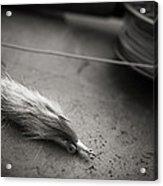 Rabbit Strip Fly Acrylic Print by Chad Simcox