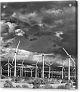 Rage Of The Wind Palm Springs Acrylic Print by William Dey
