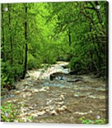 Raging Waters - West Virginia Backroad Acrylic Print by Paulette B Wright