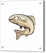 Rainbow Trout Jumping Cartoon  Acrylic Print by Aloysius Patrimonio