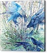 Ravens Wood Acrylic Print by Trudi Doyle