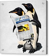 Read All Over Acrylic Print by Rob Snow