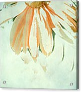 Reconstructed Flower No.1 Acrylic Print by Bonnie Bruno