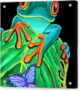 Red-eyed Tree Frog And Butterfly Acrylic Print by Nick Gustafson