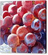 Red Grape Essence Acrylic Print by Sharon Freeman