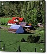 Red Roofed Barn Chiloe Island Acrylic Print by Craig Lovell