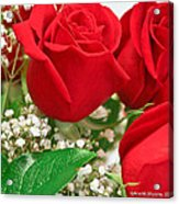 Red Roses With Baby's Breath Acrylic Print by Ann Murphy