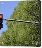Red Traffic Light By Trees Acrylic Print by Sami Sarkis