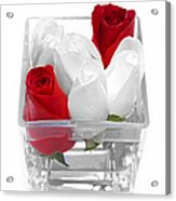 Red Versus White Roses Acrylic Print by Andee Design
