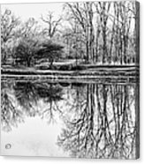Reflection In Black And White Acrylic Print by Julie Palencia