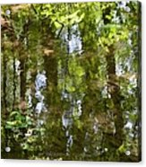 Reflection Of Woods Acrylic Print by Sonali Gangane