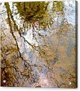 Reflections Acrylic Print by Delona Seserman