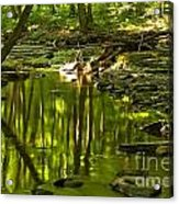 Reflections In Hells Hollow Creek Acrylic Print by Adam Jewell