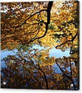 Reflections Acrylic Print by John Telfer