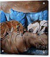 Resting Time Acrylic Print by Dorota Kudyba