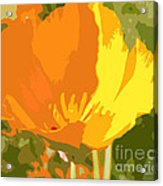 Retro Abstract Poppies 2 Acrylic Print by Artist and Photographer Laura Wrede