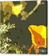 Retro Abstract Poppies 4 Acrylic Print by Artist and Photographer Laura Wrede