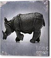 Rhinoceros Acrylic Print by Bernard Jaubert