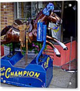 Ride The Champion Acrylic Print by Garry Gay