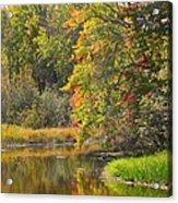 River In Fall Acrylic Print by Rhonda Humphreys
