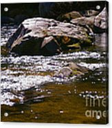 River Reflections Acrylic Print by JW Hanley