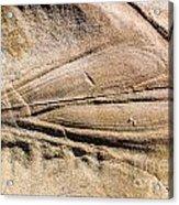 Rock Patterns Acrylic Print by Steven Ralser