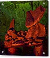Rocky Acrylic Print by Kenan Sipilovic