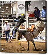 Rodeo High Flyer Acrylic Print by Jon Berghoff