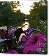 Romantic River View Acrylic Print by Customikes Fun Photography and Film Aka K Mikael Wallin