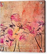 Romantiquite - 44bt22 Acrylic Print by Variance Collections