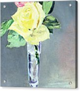 Roses In A Champagne Glass Acrylic Print by Edouard Manet