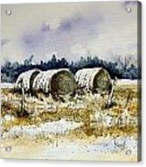 Round Bales Acrylic Print by Sam Sidders