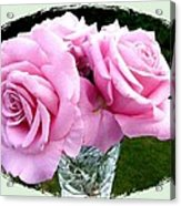 Royal Kate Roses Acrylic Print by Will Borden