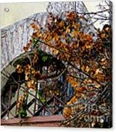 Rustic El Vergel Transom Acrylic Print by Al Bourassa