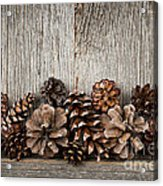 Rustic Wood With Pine Cones Acrylic Print by Elena Elisseeva