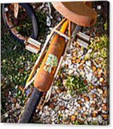Rusty Bike Bumper Acrylic Print by Sonja Quintero