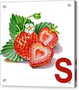 S Art Alphabet For Kids Room Acrylic Print by Irina Sztukowski