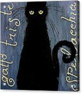 Sad And Ruffled Cat Acrylic Print by Donatella Muggianu