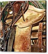 Saddle Texture Acrylic Print by Nadi Spencer