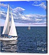 Sailboats At Sea Acrylic Print by Elena Elisseeva