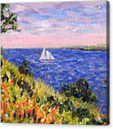 Sailing Through Belfast Maine Acrylic Print by Pamela Parsons