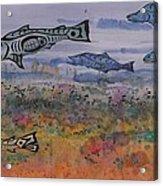 Salmon In The Stream Acrylic Print by Carolyn Doe