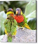 San Diego Zoo - 1212341 Acrylic Print by DC Photographer